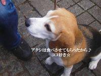 20100425_890177.jpg